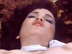 Swedish Erotica Hard 22 Seka Desiree Sex 101 1993